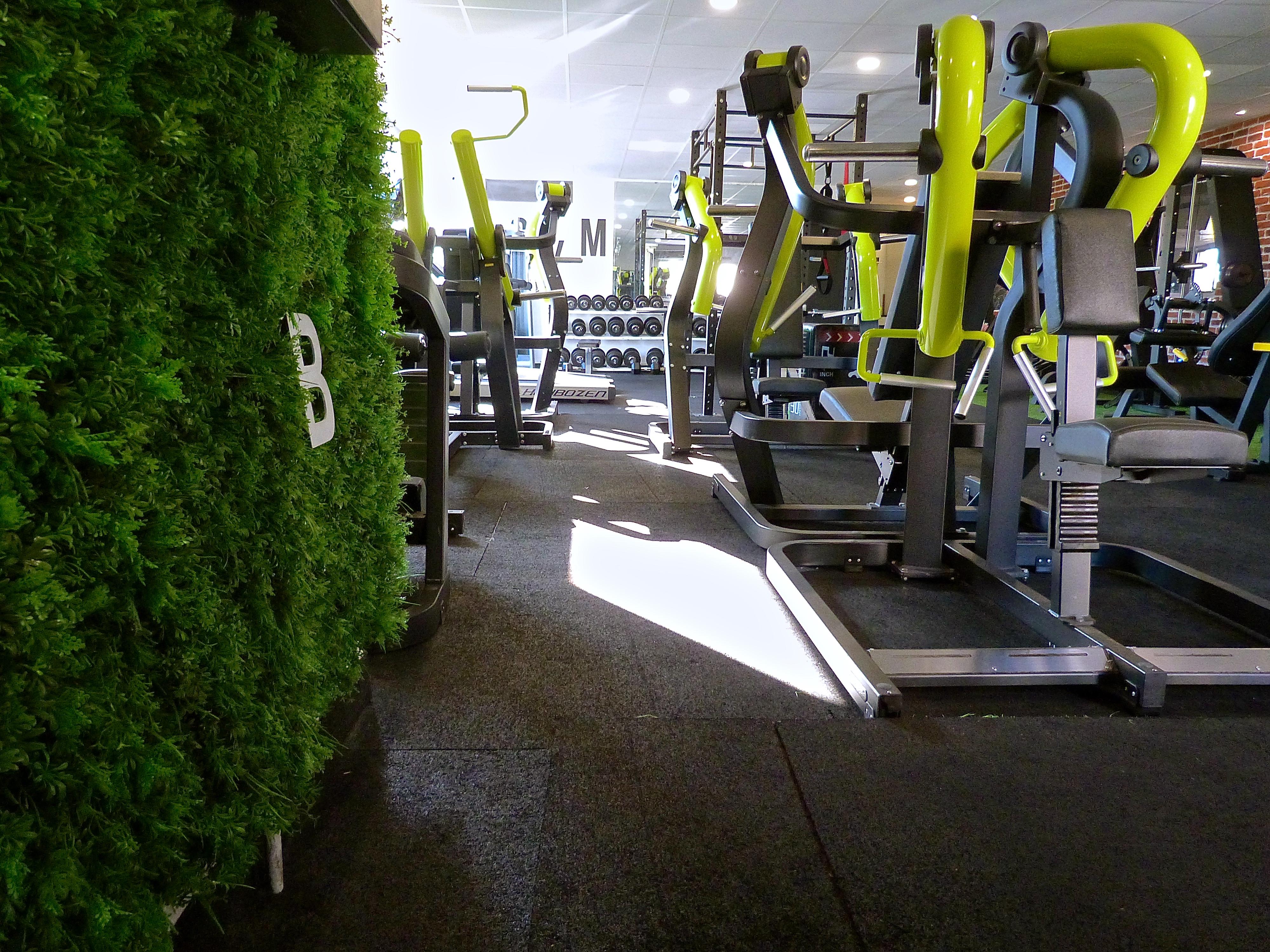 Accueil Gym Club Viton Salle De Sport Marseille